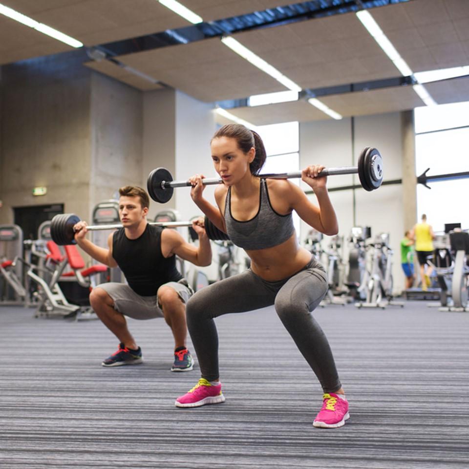 Gym / Fitness Club