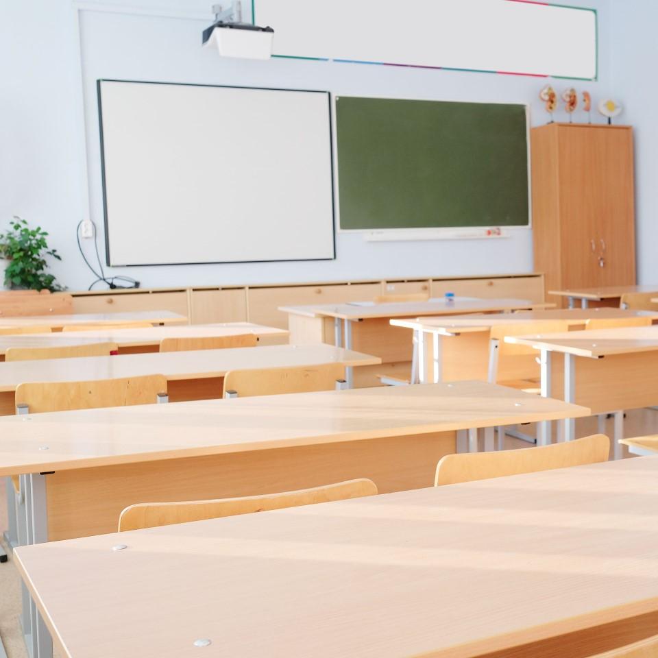 Kindergarten / School